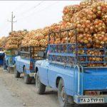 قاچاق پیاز با کامیونهای حامل گوجه